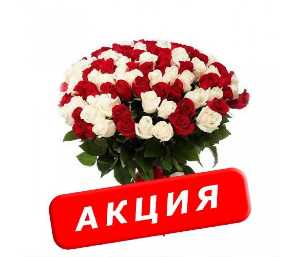 Розы по акции №03