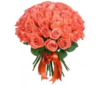 Кораловые Розы (выберите высоту и кол-во)