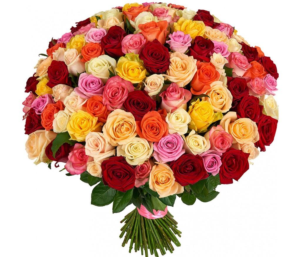 Розы микс в ассортименте №248