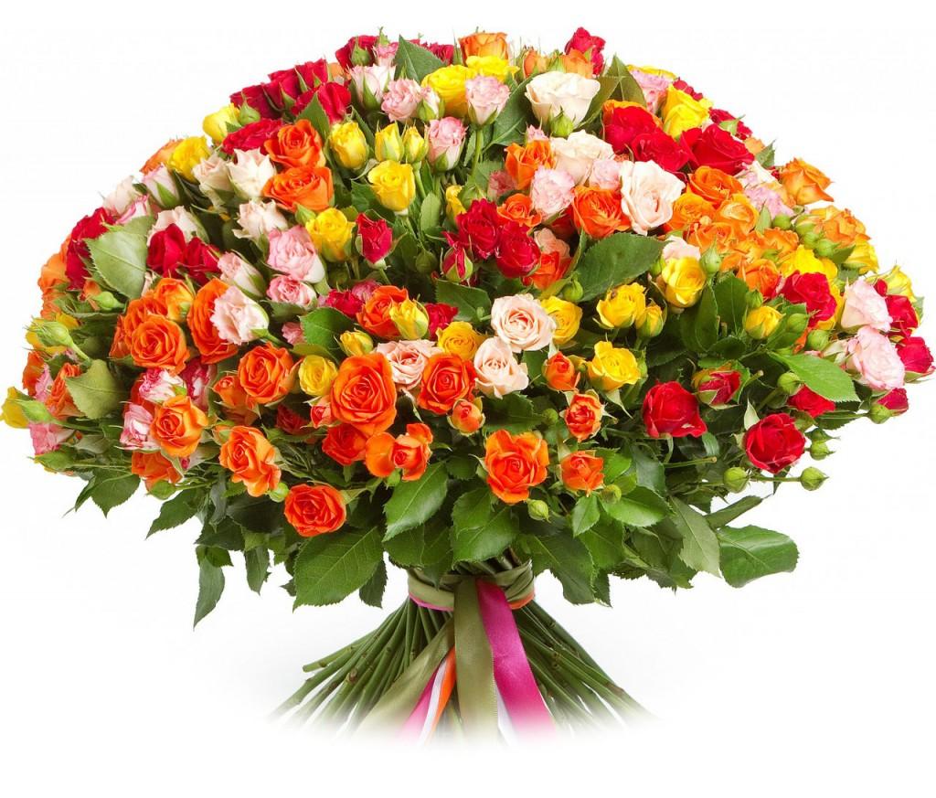 Букет из  кустовых роз  №088