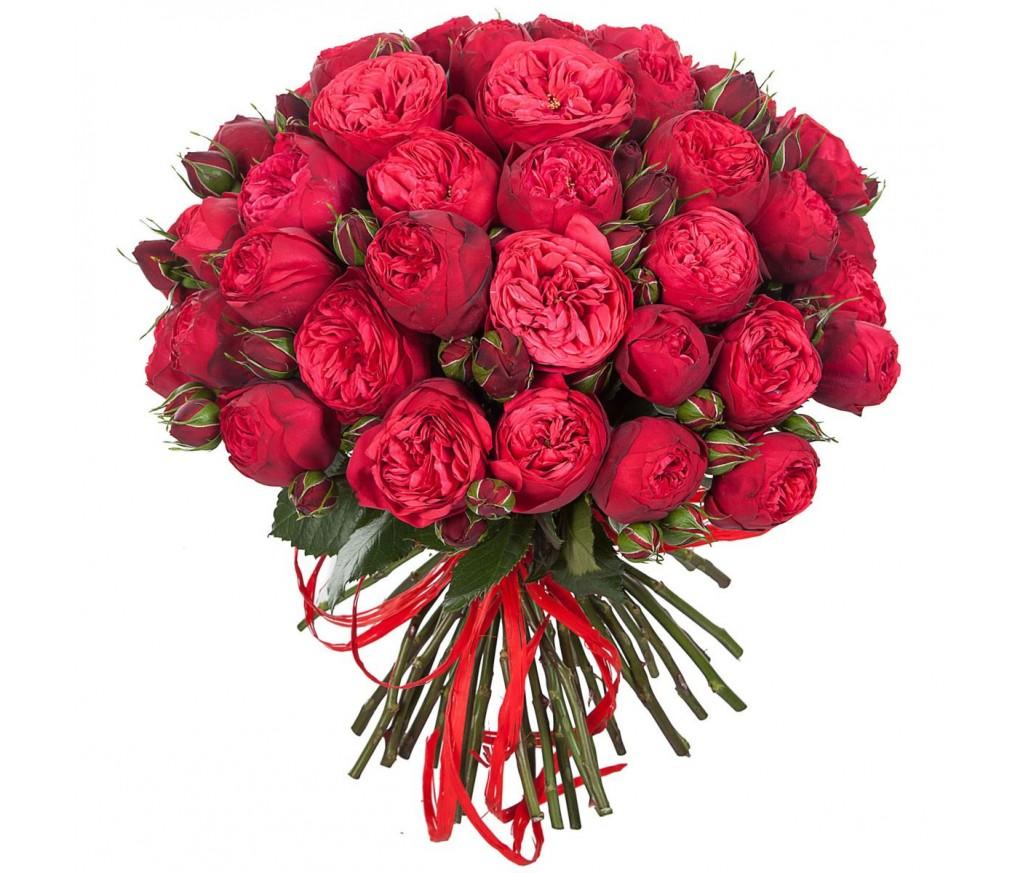 Букет пионовидных роз № 291