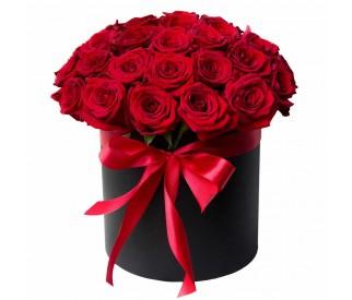 Красные  розы в коробке №338-2