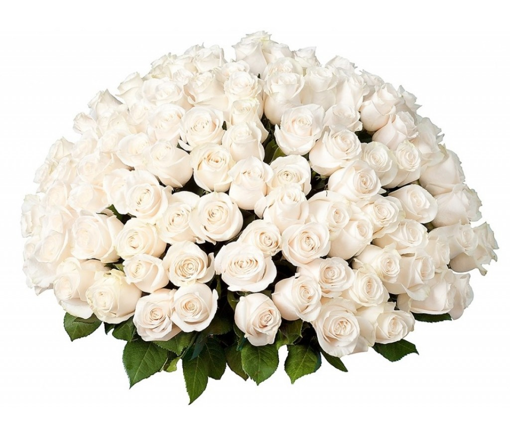 Белые розы поштучно (артикул 238)